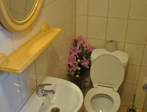 toaleta w domku